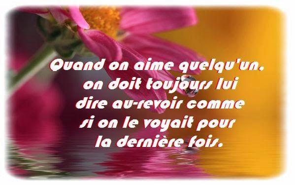 Citation d'amitié - Poème d'amitié - Phrase d'amitié - Proverbe d'amitié: CITATION D'ADIEU AMITIE