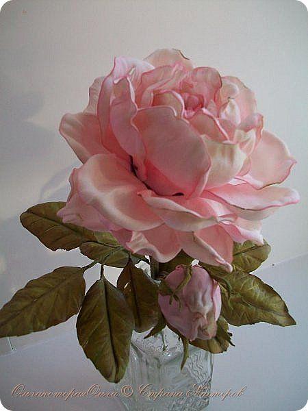 Розочка садовая фото 1