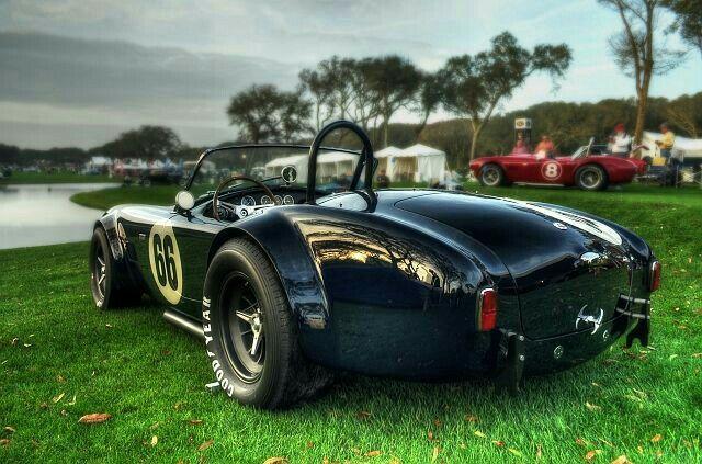 Shelby Cobra Track Car