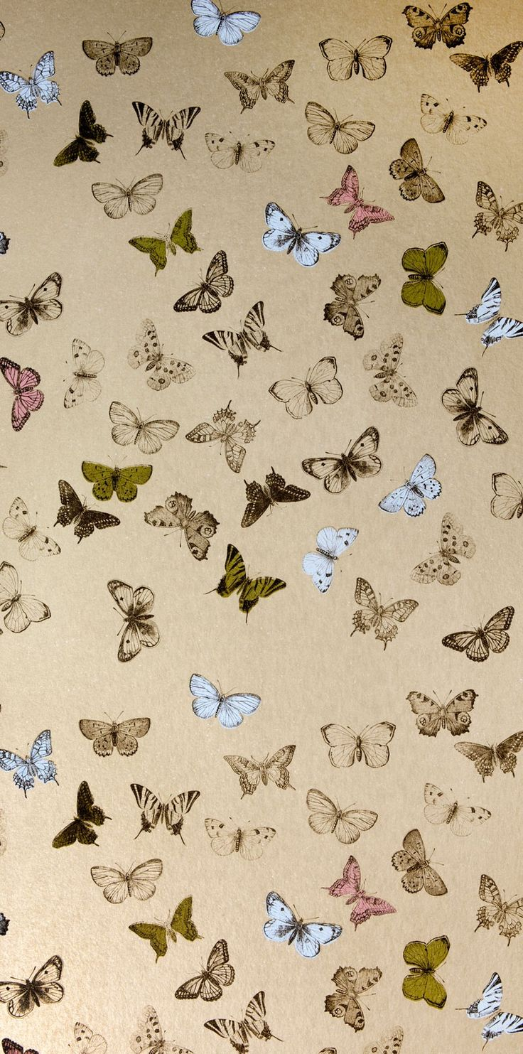 A breakfast nook, powder room, or other small space could set your heart a-flutter with this multi-colored butterfly motif wallpaper from Mimou.  We hang #wallpaper in the #Bellingham WA area. http://www.northpinepainting.com