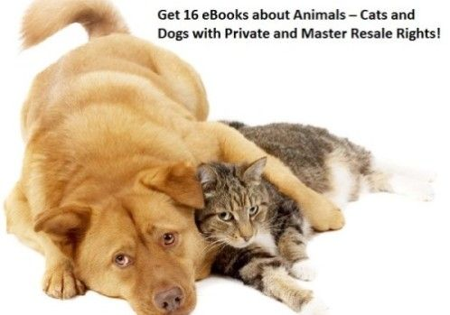 Get 16 #eBooks about #Animals – #Cats and #Dogs with Private and Master Resale Rights #PLR #MRR #Salespages, #Salesletters, #Articles, #Keywords, #Ads, #Reports, #Covers, #Minisites
