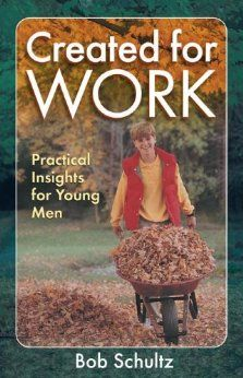 Created for Work: Practical Insights for Young Men: Bob Schultz: 9781883934118: Amazon.com: Books