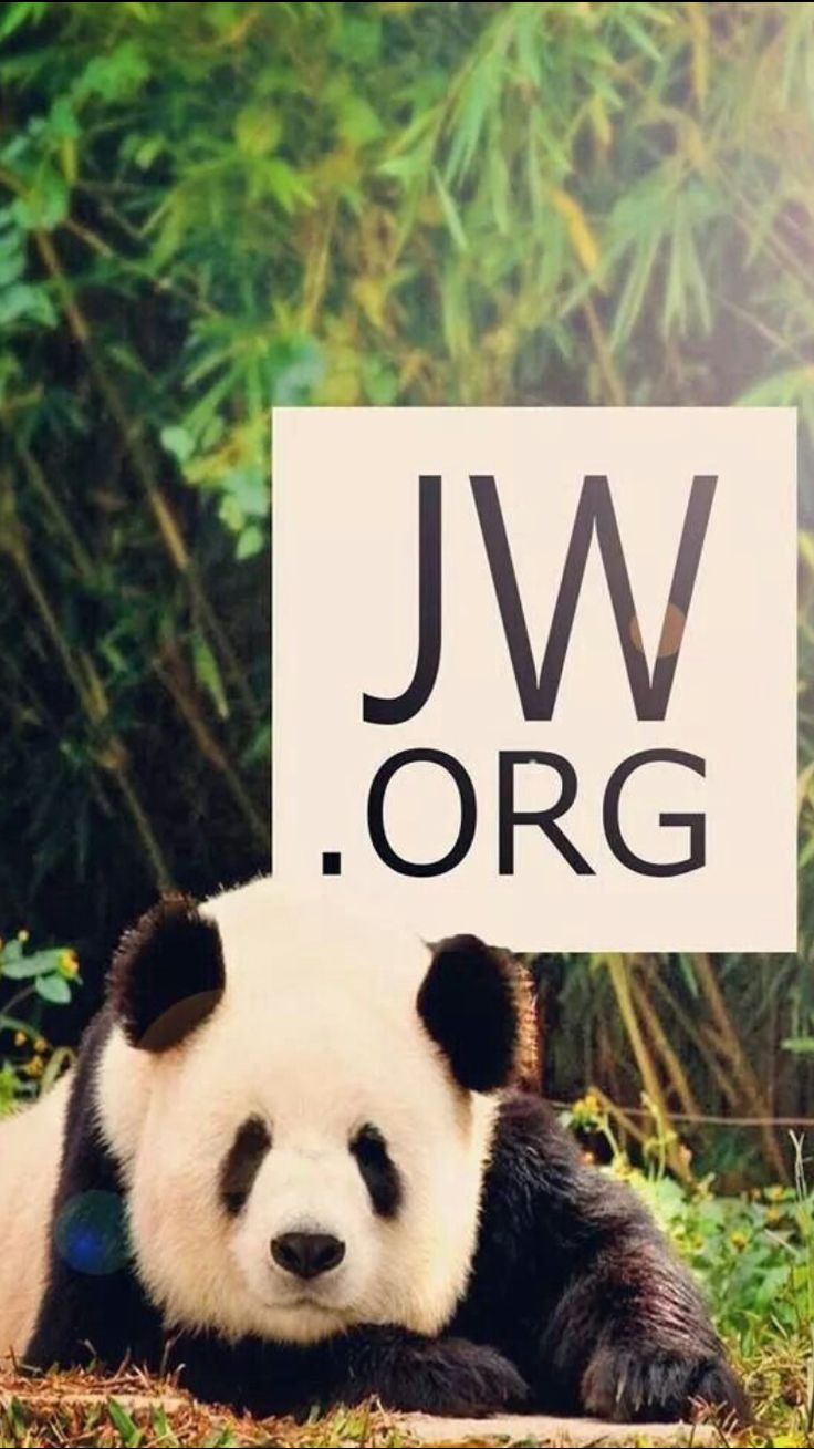 1000 Images About Jw Org Wallpapers On Pinterest