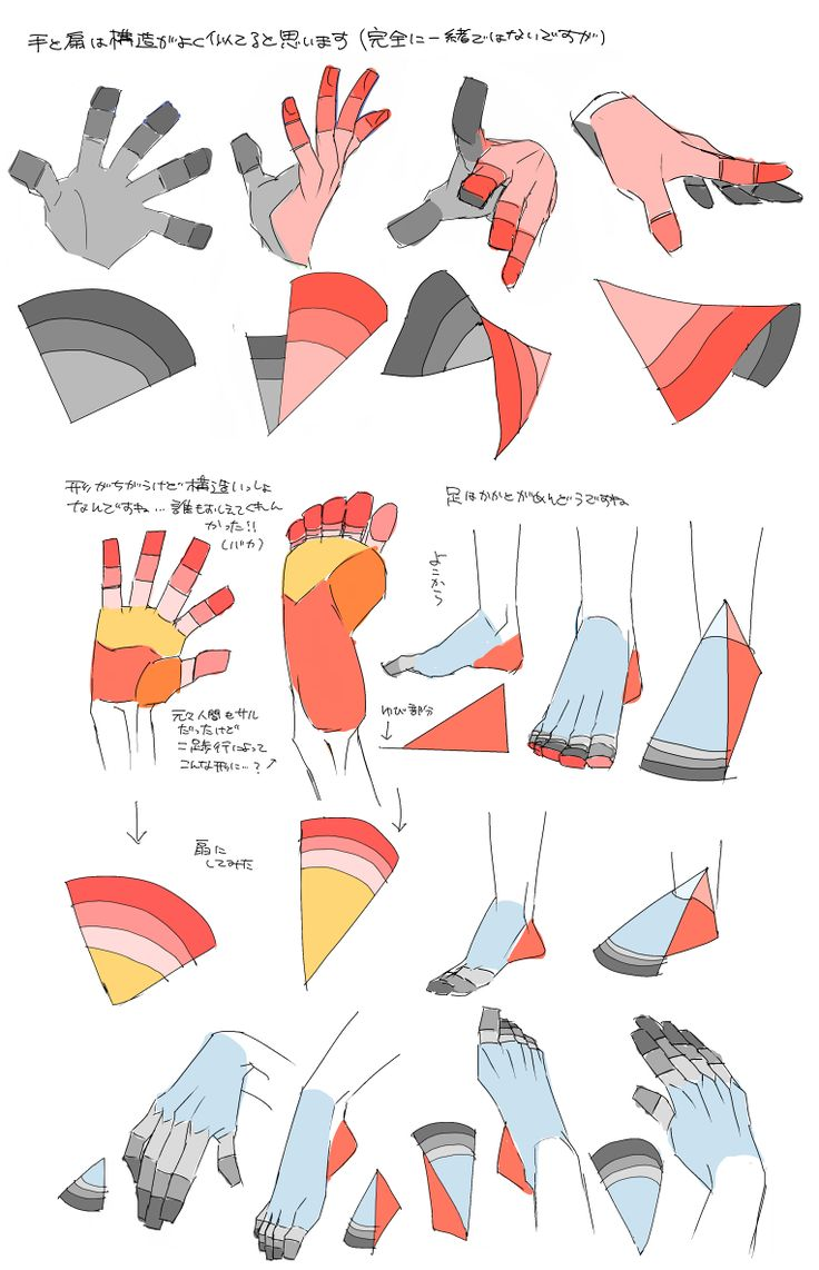 Hand and foot drawing / illustration resource ✤ || CHARACTER DESIGN REFERENCES | キャラクターデザイン | •