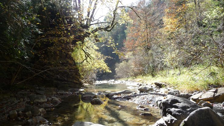Rio Chate. Punto donde vadea el GR15 el rio del homónimo bosque.