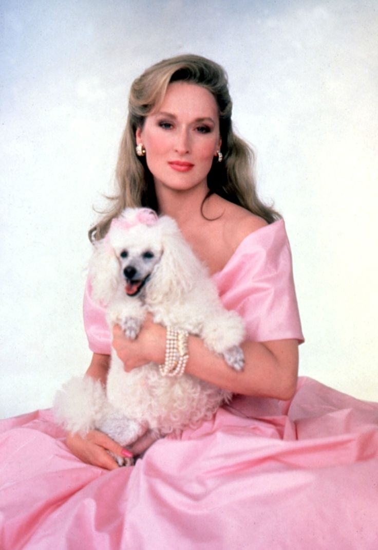 meryl streep  i recognize this shot  taken from the movie she devil  very funny movie with