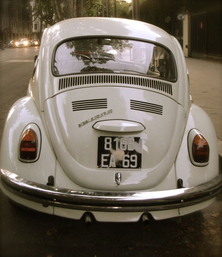 ideas  volkswagon bug  pinterest vw bugs volkswagen  project cars  sale