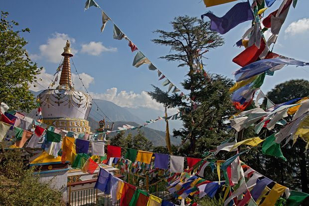 Dharamsala, India.  A place in northern India with a mix of Tibetans and Indians.