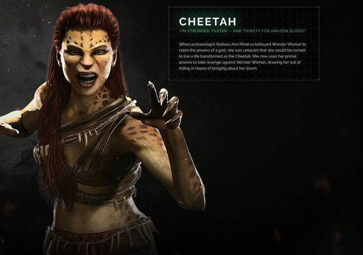 Cheetah (why is she in this game?)