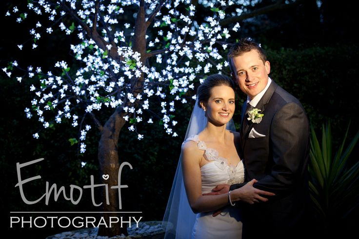 Love fairy lights at the reception - This light tree is at poet's lane in the Dandenongs Victoria. Emotif Wedding Photography collections from $1770