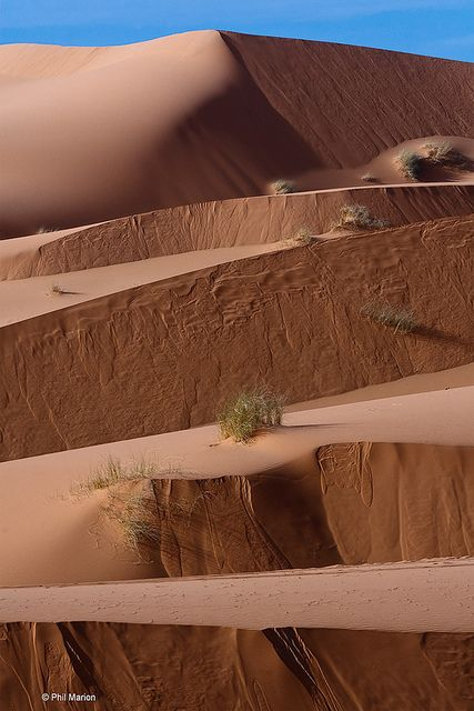 levels of sand in the Sahara - Erg Chebbi, Morocco | Phil Marion, via Flickr