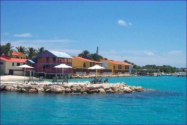 Best 25 flamingo beach ideas on pinterest aruba pictures tropical paradise and aruba aruba - Dive e divi ...