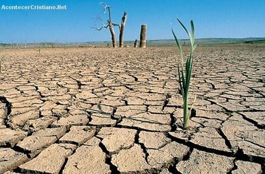 En el año 2013 habrá hambruna en todo el mundo, según la ONU