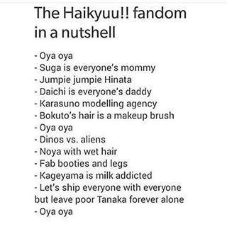 That's the most accurate description of the fandom I've ever seen XD