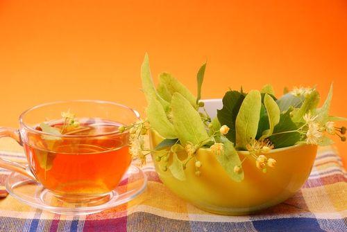 Nejčastěji se na teplotu užívají bylinky jako je černý bez, lípa srdčitá, meduňka, vrba bílá.