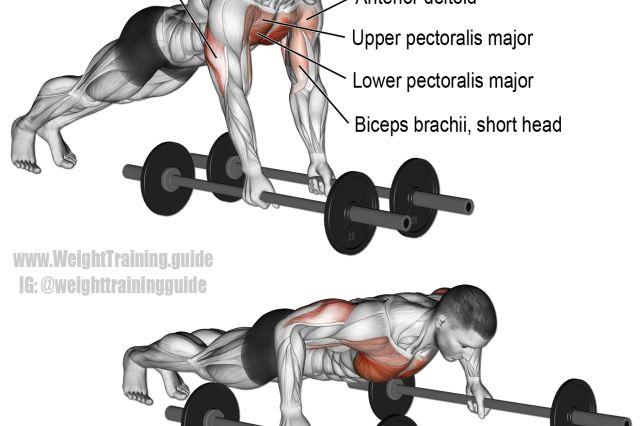 56 best body building images on pinterest