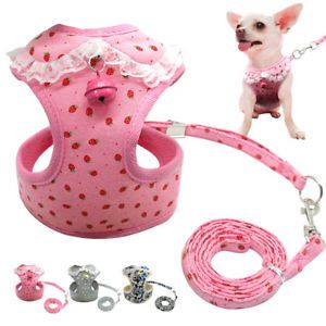 Mesh Padded Dog Harness & Leads Pet Puppy Soft Vest for Dogs XS S M Chihuahua  | eBay