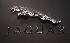 Image result for jaguar car images