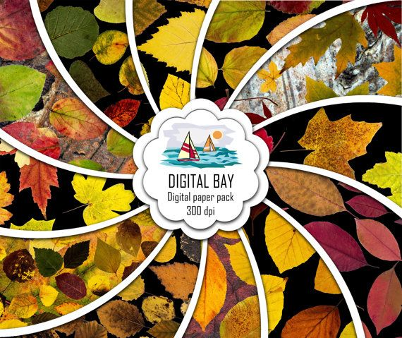 AUTUMN LEAVES  FALL  Digital papers Instant download by DigitalBay