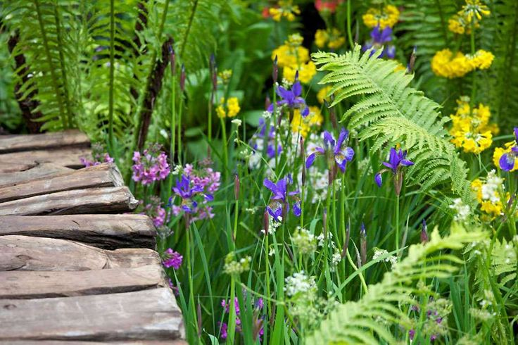 someday I want to go to this --> RHS Chelsea Flower Show 2015 / RHS Gardening