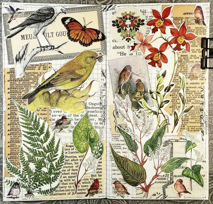 #constancerosedesigns #collage #collagejourney #collageartist #artjournal #mtn #travelersnotebook #vintagepaper