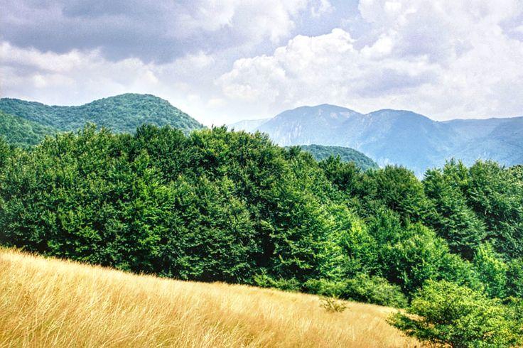 Widok z Cernei na Mehedinti  Na szczęście krzewiasta dżungla ustapiła miejsca szerokiej ścieżce przez malowniczą buczynę, aby po chwili wyprowadzić nas na widokową polanę na przełęczy.