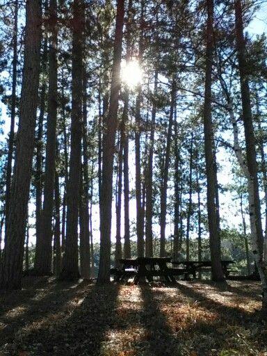 Clark Lake, Sylvania Wilderness Area, Michigan