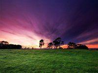 Bellissimo sfondo di Paesaggi Bellissimi Verde Viola, con risoluzione 1440 x 900 categoria Paesaggi Mare Montagna per il Desktop del tuo PC. Foto spettacolare, wallpaper bellissimo