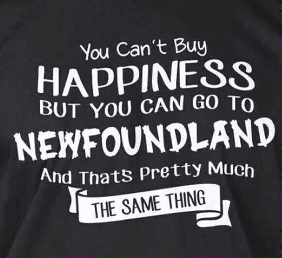 You can't buy HAPPINESS, but you can go to NEWFOUNDLAND and that's pretty much the same thing!!! ❤️