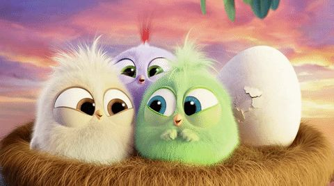 Angry Birds laugh nest angry birds movie hatchlings