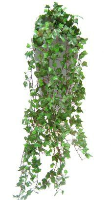 3.5ft Artificial English trailing Ivy bush. Perfect artificial trailing plant to create your very own maintenance free vertical garden, add into hanging baskets or even to clad to a wall or fence to help disguise it.