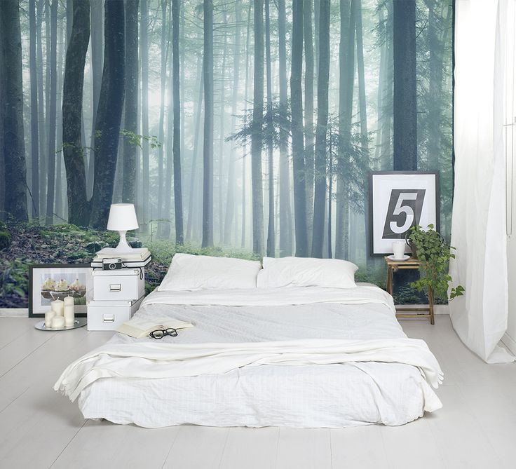 Wonderful This Forest Wallpaper Makes A Stunning Feature Wall In The