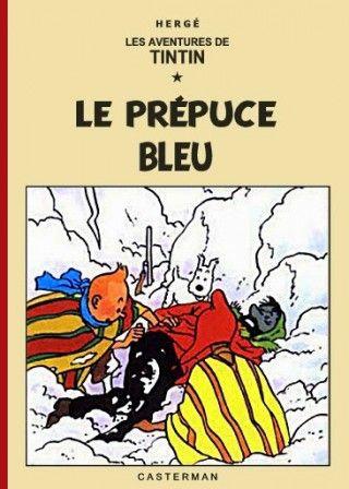 le plan grand froid expliqué aux enfants : Tintin et le prépuce bleu