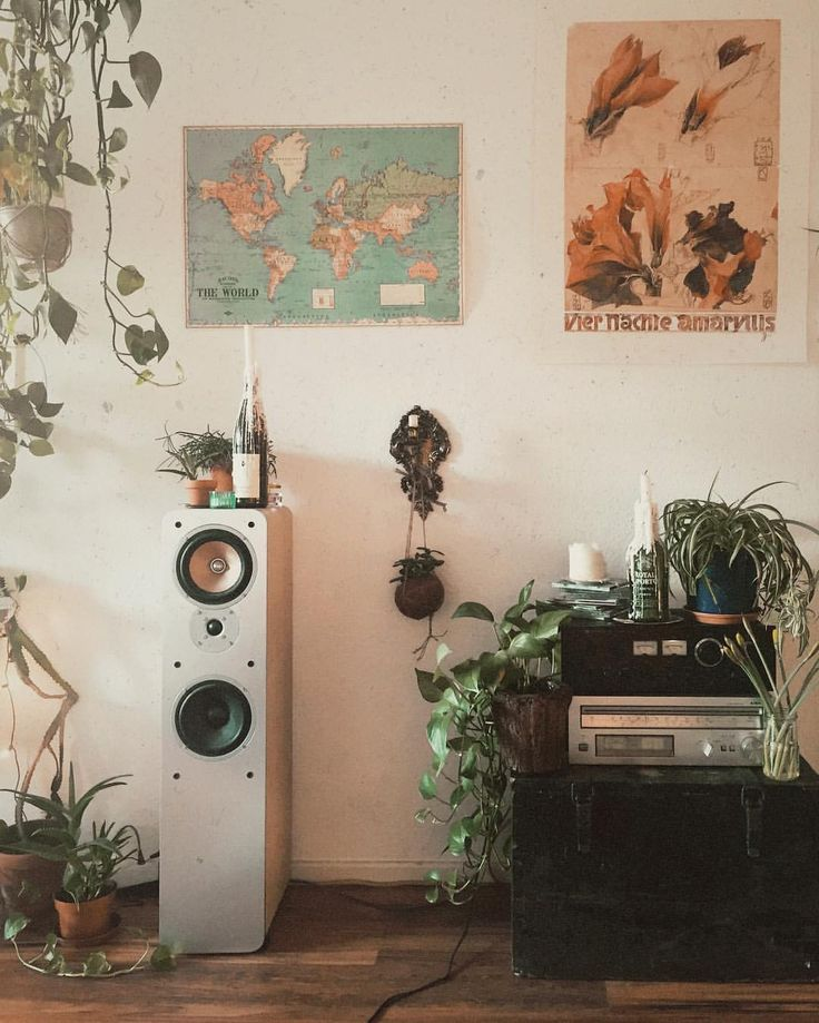 #home#plants#interior