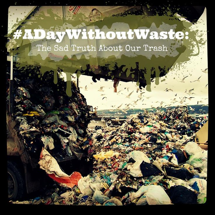 Americans produce more than 370,000 pounds of garbage daily. Yikes! No matter where you are in the world, however, it's time to put an end to our horrendous wastefulness! Join the #ADayWithoutWaste initiative and be part of the movement to mindfulness for our planet!  Get the full scoop (and details on how to participate) on the blog.