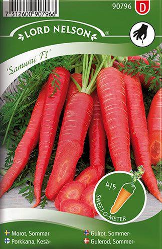 En dekorativ, rød sommergulerod med lyst rosa frugtkød. De lange, slanke rødder høstes efter behov - de er herlige at spise direkte fra bedet! Gulerødderne kan også bruges i såvel brød- som kagebagning for at forhøje saftigheden, og hjemmelavet gulerodsmarmelade er en rigtig delikatesse.