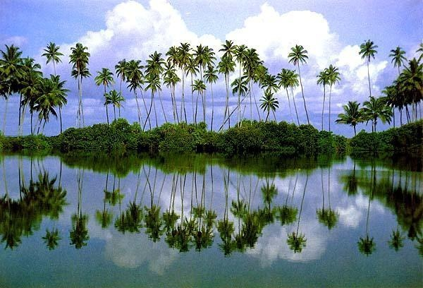 Jaffna, Sri Lanka | Been there, done that. | Sri Lanka ...