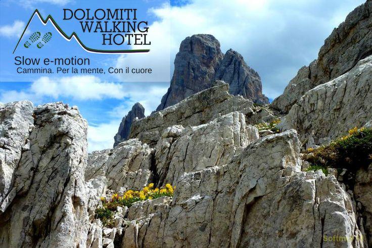 Tra i panorami delle Dolomiti