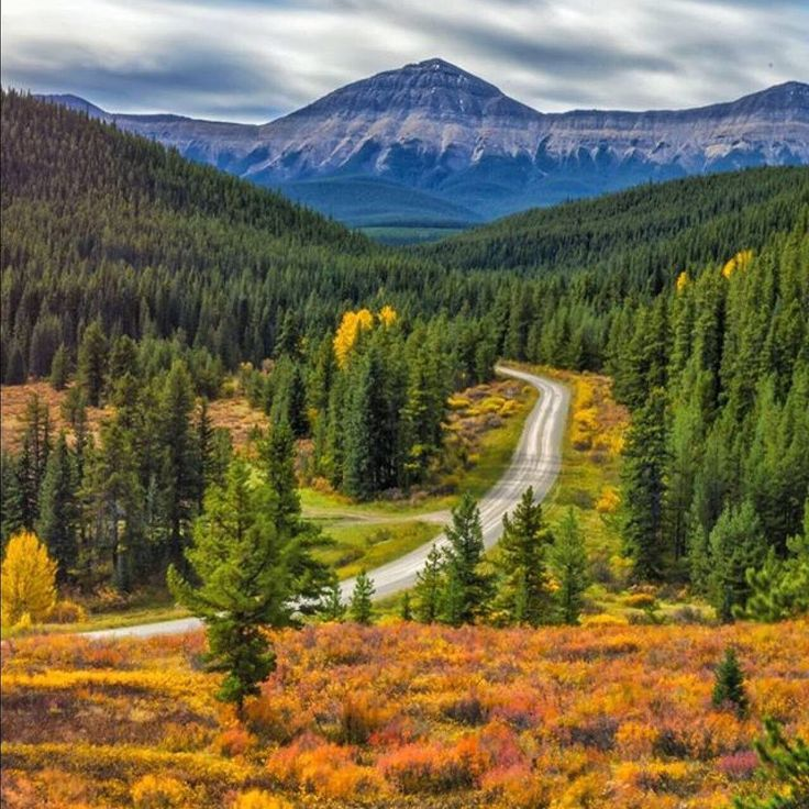 Fall colours are coming along nicely in this remote area south of Nordegg in Alberta. Can you see yourself RV-ing here? (Photo: @splitsecondsnapshot via Instagram)