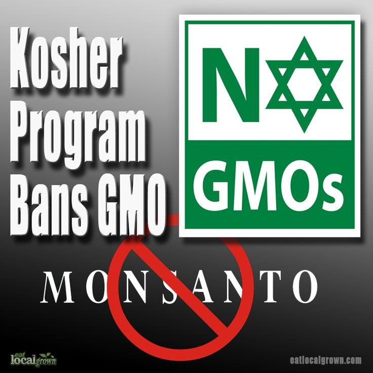 This Kosher certification program is the latest group to denounce GMO ingredients. According to the strict letter of Kosher food law a GMO food ingredient is not natural...