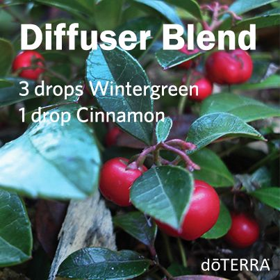 Looking for a new diffuser blend? Give this one a try! You'll love the refreshing and spicy aroma. Christmasy scent to me. Wintergreen & cinnamon