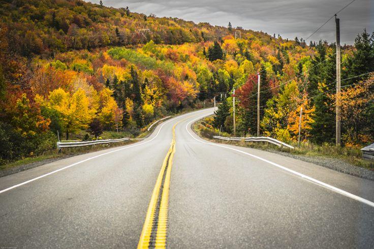 The Road | pierretrowbridge.com