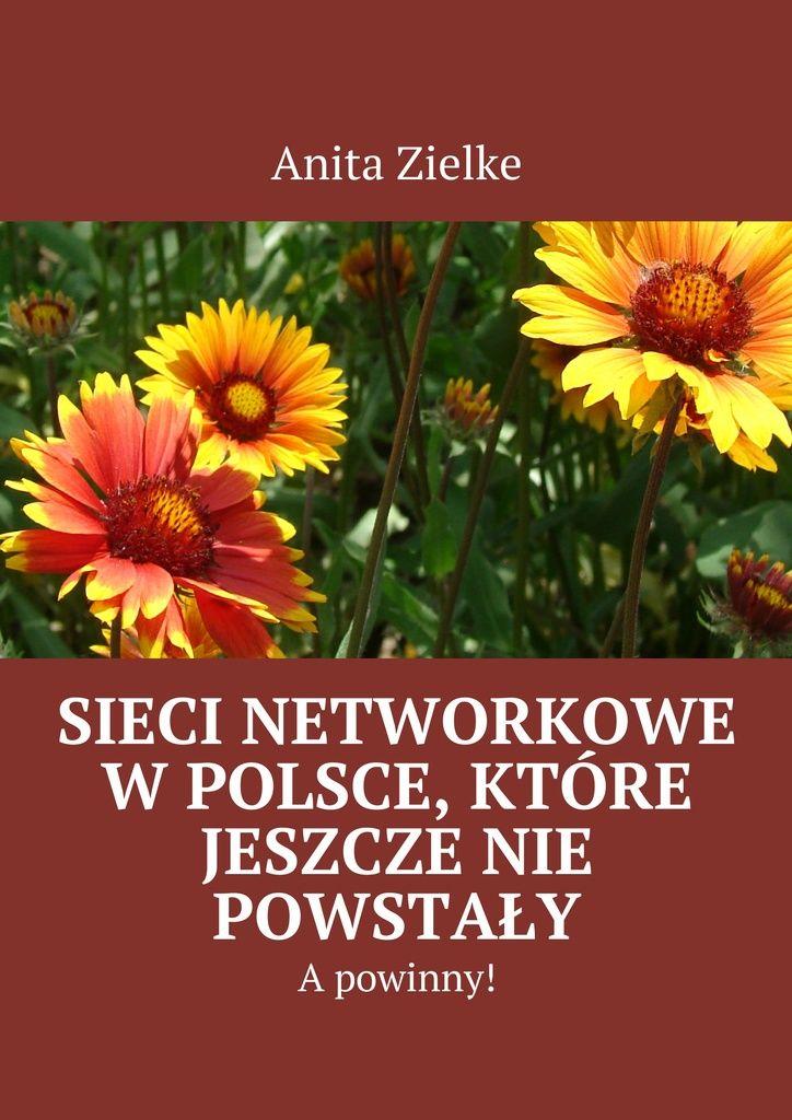 Sieci Networkowe wPolsce, które jeszczenie powstały - Anita Zielke — Ridero