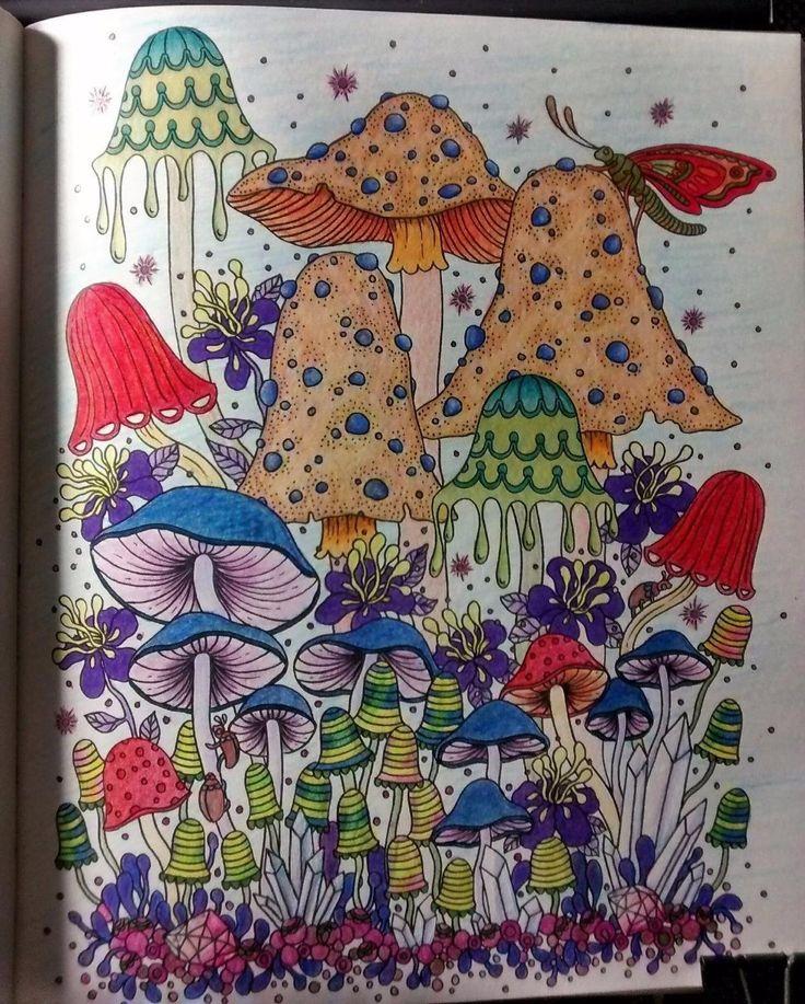 97 Enchanted Forest Coloring Book Hardcover