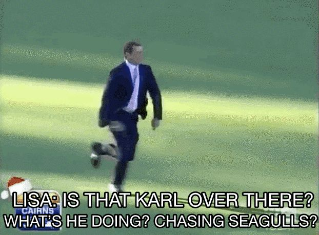 When he was caught chasing seagulls in a field. | 21 Times Karl Stefanovic Proved He Was The Greatest Morning Show Host