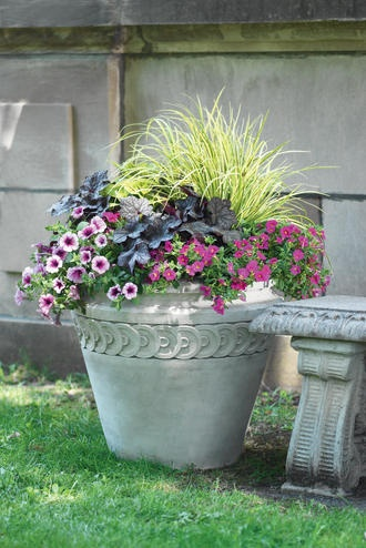 Cheery planter on martha 39 s vineyard ma in the garden for Best ornamental grasses for pots