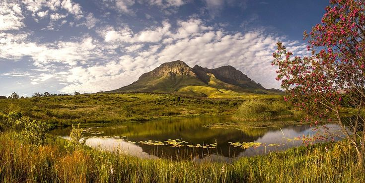 Helderberg Nature Reserve in Somerset West - Cape Town. Beautiful area with a variety of hiking trials. (pic Bryn De Kocks) #naturereserve #Helderberg #SomersetWest