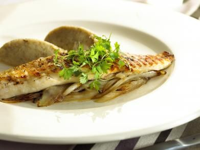 Gegrilde vis met witloofpuree