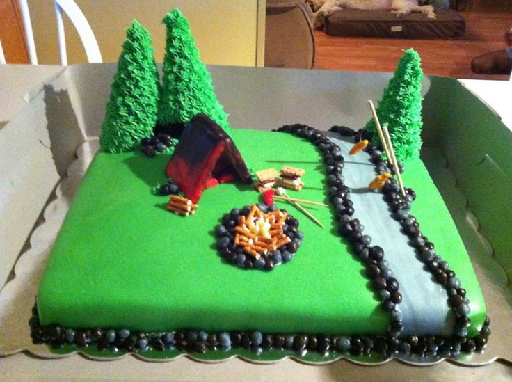 Camping Cake Cakes I Have Made Pinterest Camping