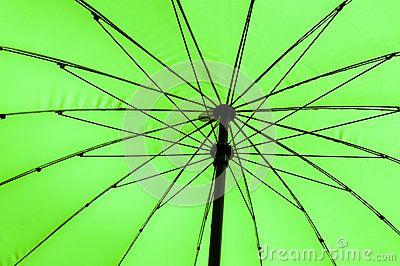 Beautiful green umbrella abstract background.